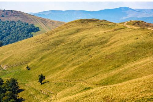 山と丘の違いは高さ?大きさ?明確な基準はなんなの…