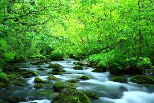 「川」と「河」